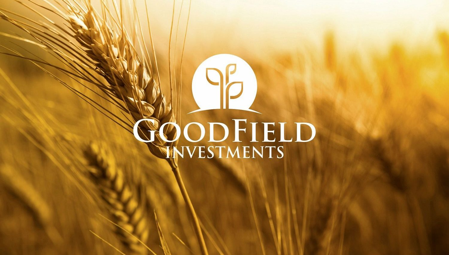 GoodField_Investments_proof_29 (1)
